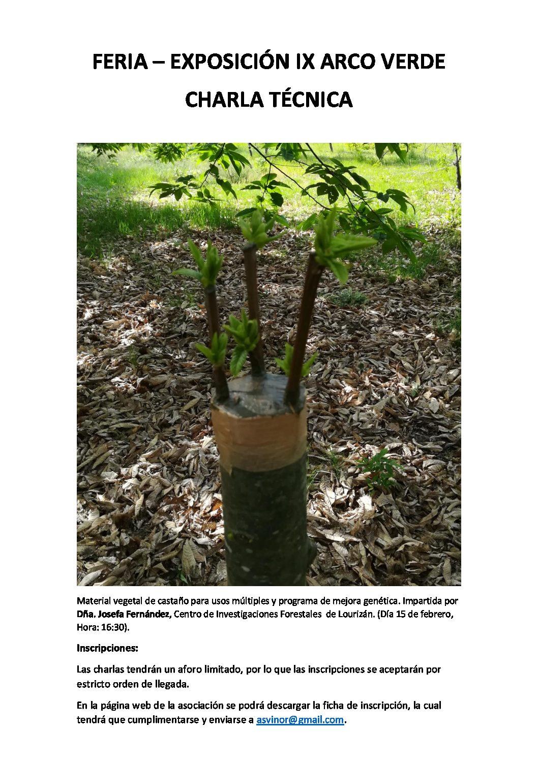 Material vegetal de castaño para usos múltiples y programa de mejora genética.